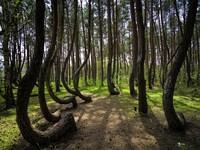 14 Чарующих мест,  которые заставят позабыть, что вы с планеты Земля