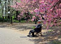 10 стран, где лучше всего встретить старость