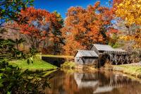 50 восхитительных осенних фотографий 50 американских штатов от А до Я (часть 1)