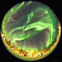 Ослепительный танец Аврора Бореалис в ночном небе Канады