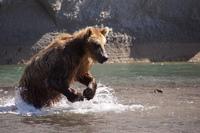 Дикая Камчатка. 25 фото необычайных красот русской природы, о которых вы даже не подозревали