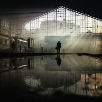 20 победителей конкурса фотографий, сделанных на мобильный телефон