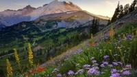 20 мест планеты, которые становятся еще краше с приходом весны