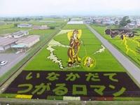 Сложно поверить своим глазам, когда видишь, что японцы вытворяют на полях!