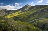 Самые удивительные факты о ЮАР, о которых вы не знали