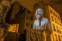 Cтильные животные украсили здания в Париже