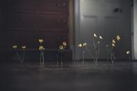 17 снимков, воспевающих прелесть минимализма, от которых невозможно отвести взгляд