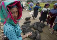 Вьетнам: жизнь одной из самых удивительных стран мира в снимках