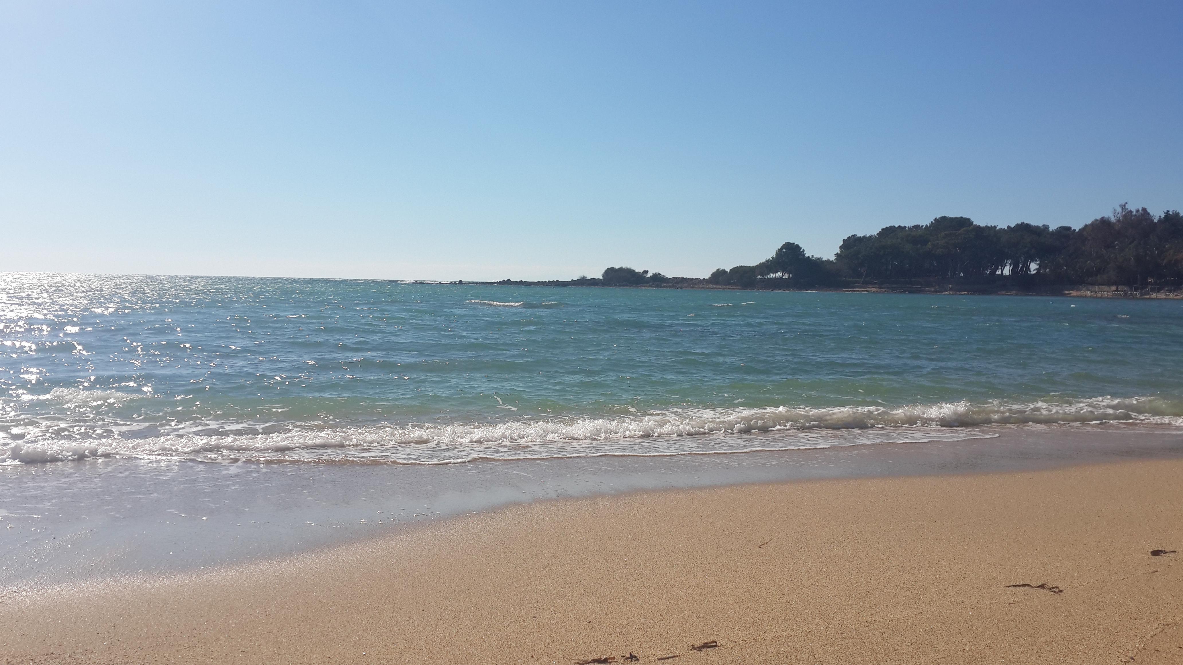 Ночь на пляже не стесняясь, бутылки и овощи в пизде и попе