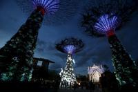20 самых оригинальных и красивых новогодних елок со всего мира