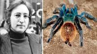 10 видов животных, о которых человечество узнало только недавно