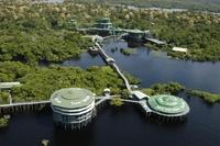 10 лучших отелей на деревьях в мире