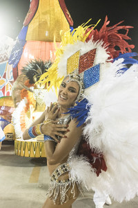 20 пикантных снимков с последнего карнавала в Рио-де-Жанейро на грани фола