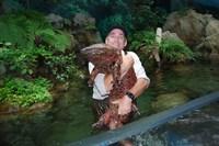 17 гигантских животных, при виде которых становится дурно
