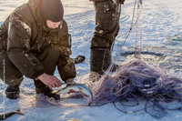 Борьба с браконьерами на Байкале