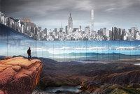 Центральный парк Нью-Йорка оградят 300-метровой стеной