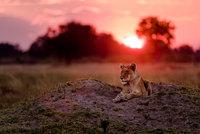 10 самых крутых снимков, представленных на конкурс National Geographic Traveler 2016