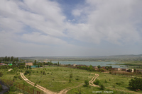 Африка в Крыму