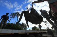 Особенности перевозки слонов: 13 любопытных кадров