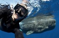 13 самых эпических селфи путешественников, которые язык не повернется назвать скучными
