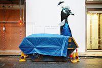 15 уличных фото, доказывающих, что в снимке самое главное — поймать момент