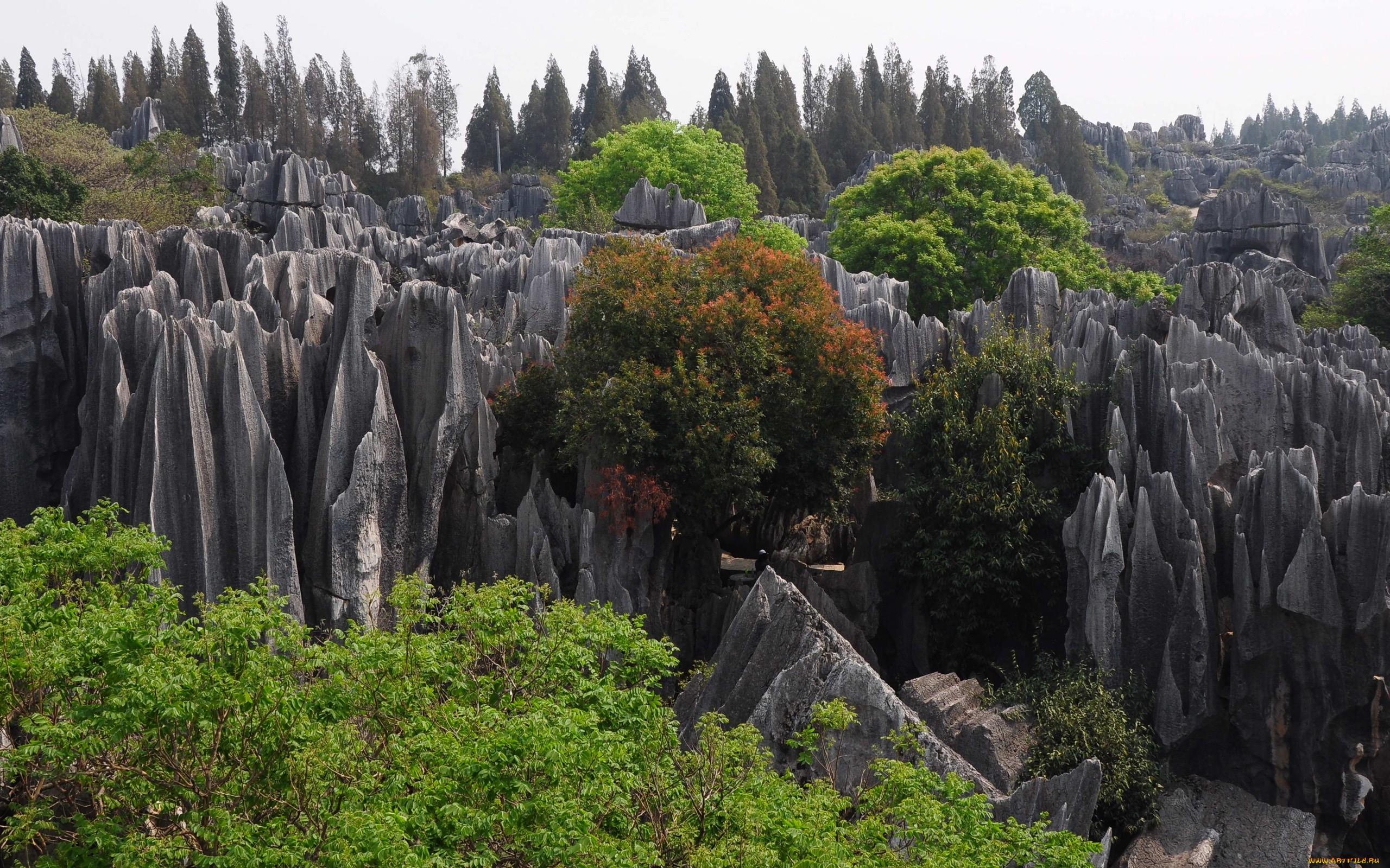 1e7b94ebb0e Самое необычное место на Земле