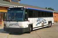 Greyhound Bus
