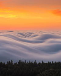 10 фантастических снимков тумана, которые кажутся абсолютно нереальными
