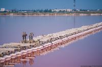 Соледобыча на озере Сасык-Сиваш под Евпаторией