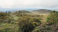 Прибытие на Галапагосы — остров Санта-Крус