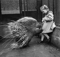 20 старых уличных снимков о жизни детей в Великобритании середины прошлого века