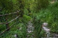 Нетуристическая Черногория: заброшенная деревня Горная Ласточка