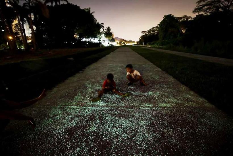 В Сингапуре тестируют светящиеся в темноте аллеи и тропинки