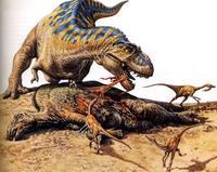 Почему у тираннозавров были такие маленькие передние лапы