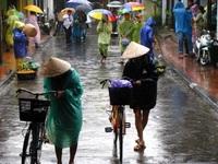 Тропический дождь во Вьетнаме