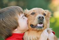 Ученые выяснили, кто же все-таки умнее — собака или кошка