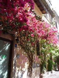В районе Trastevere, Рим
