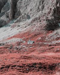 Фотограф показал, как видят мир люди с тританопией