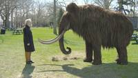 Китайские генетики клонировали приматов, на очереди динозавры, мамонты и человек