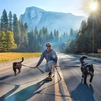 Парень путешествует по США со своими щенками, которых нашел в пустыне
