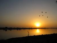 Повторение судьбы Арала: почему умирает озеро Чад в самом сердце Африки