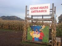 Перед входом в кукурузный лабиринт