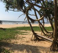 Bentota Beach в апреле