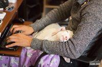 Люди, работающие с животными, делятся чудесными снимками своих подопечных