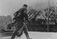 25 редких снимков, которые изображают войну такой, какая она была на самом деле