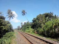 Июль в Шри-Ланке