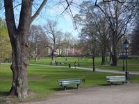 Весной в парках Стокгольма скрываются клещи
