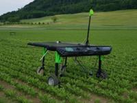 В Швейцарии появился робот, который поможет искоренить ГМО-растений
