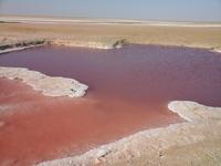 розовое озеро в пустыше Шотт-Эль-Джерид