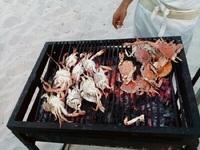 морепродукты, остров Джерба